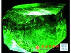 皇冠上的珍贵宝石 领略祖母绿之高贵