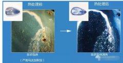 日本GAAJ红蓝宝石热处理鉴定